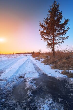 mire: Wheel tracks in mire at winter. Sunset nime Stock Photo