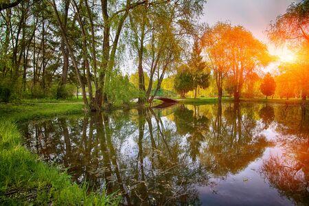 햇살에 무성 한 녹색 우드 랜드 공원과 고요한 연못. 물에 반사 된 나무 스톡 콘텐츠