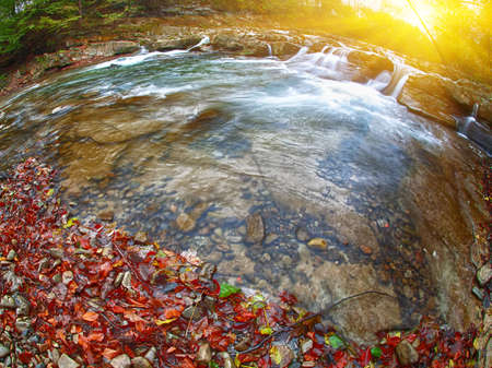 mountain river at autumn time. Moution of water. Fallen leaves