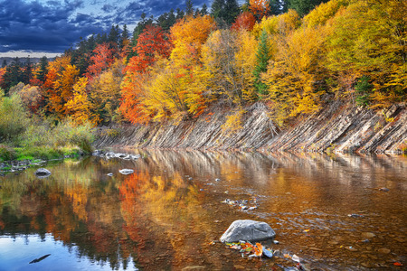 mirror image: autumn forest by the river. Reflection in water