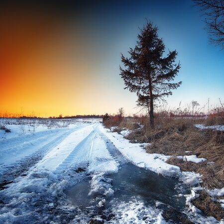 Wheel tracks in mire at winter. Sunset nime Stock Photo