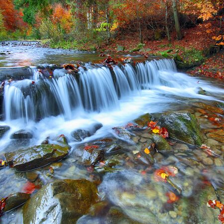 Autumnal forest, rocks covered with moss, fallen leaves. Mountain river with rapids and waterfalls at autumn time. Carpathian. Stock Photo