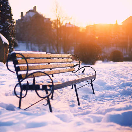 Bench in the winter city park at sunset time