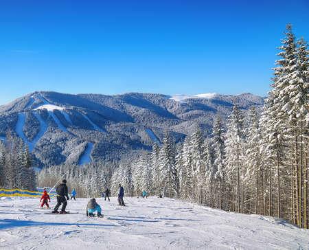 Pine on a mountain slope.Beautiful blue sky. Ski route