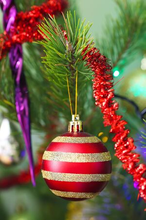 Shiny Christmas red ball hanging on pine branches with festive background Stock Photo