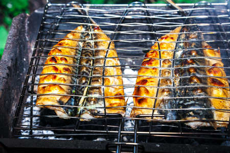 appetizing pieces of roasted fish on the fire. Smoky background