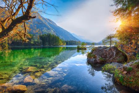 Fantastic autumn sunset of Hintersee lake. Beautiful scene of trees near turquoise water of Hintersee lake. Location: resort Ramsau, National park Berchtesgadener Land, Upper Bavaria, Germany Alps, Europe