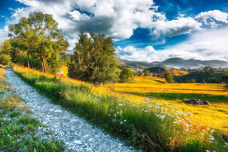 Majestic countryside landscape with forested hills and grassy meadows in mountains. Road to picturesque romanian village Rogojel of Cluj County, Romania, Europe