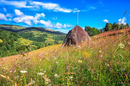 Beautiful countryside landscape with forested hills and haystacks on a grassy rural field in mountains. Scene in Rogojel village of Cluj County, Romania, Europe