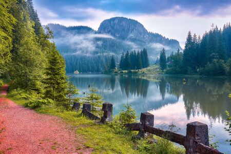 Majestic summer view of mountain lake Lacul Rosu or Red Lake or Killer Lake. Rotten tree trunks. Logs coming out of the water. Harghita County, Eastern Carpathians, Romania, Europe