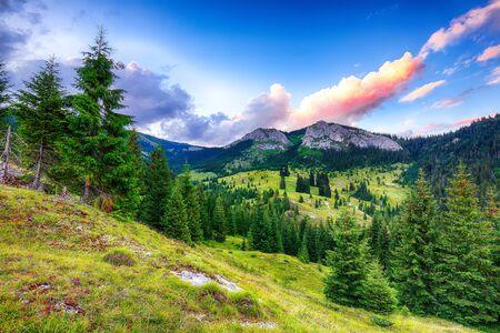 View of Pietrele Albe mountaine peak at summer time. Majestic sunset at Apuseni Natural Park, Cluj County, Transylvania, Romania, Europe Foto de archivo - 132529845
