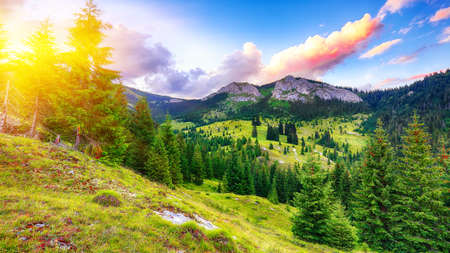 View of Pietrele Albe mountaine peak at summer time. Majestic sunset at Apuseni Natural Park, Cluj County, Transylvania, Romania, Europe Stock Photo