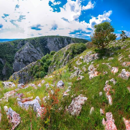 Turda gorge Cheile Turzii is a natural reserve with marked trails for hikes on Hasdate River situated near Turda close to Cluj-Napoca, in Transylvania, Romania, Europe. View from the top
