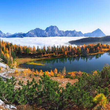 Maravillosa vista otoñal con cielo de color, majestuoso monte rocoso y coloridos árboles que brillan intensamente con la luz del sol del lago Federa en Dolomitas. Ubicación: Federa lake with Dolomites peak, Cortina DAmpezzo, South Tyrol, Dolomites, Italy
