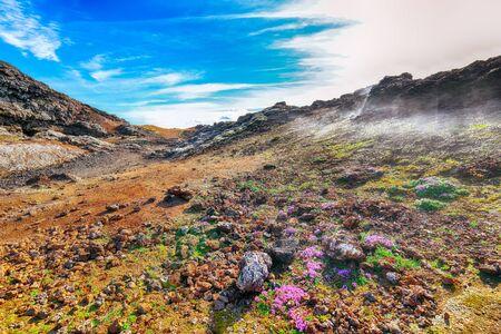 Frozen lavas field in the geothermal valley Leirhnjukur, near Krafla volcano. Location: valley Leirhnjukur, Myvatn region, North part of Iceland, Europe Banco de Imagens - 130807302