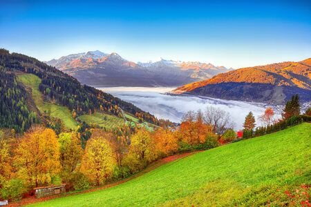 Spectacular autumn view of lake meadows trees and mountains in Sell Am See. Fantastic sunrise over lake. Location: Zell am See, Salzburger Land, Austria, Europe 免版税图像