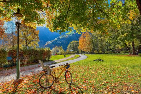 Spectacular autumn view of lake and trees in city park of Sell Am See. Fantastic sunny day over lake. Location: Zell am See, Salzburger Land, Austria, Europe