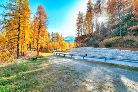 Awesome autumn scene near Maloja village and asphalt road on the shore of Sils lake(Silsersee). Location: Maloya, Engadine region, Grisons canton, Switzerland, Europe. Reklamní fotografie