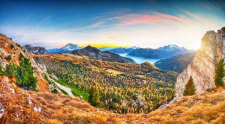 Awesome autumn in Dolomite Alps with larches i and mountaines Marmolada and Monte Civetta at sunset. View from top of Falzarego pass. Location: Falzarego pass, Cortina d'Ampezzo, Dolomiti, Italy Banco de Imagens