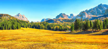 Scenic image of meadow in National Park Tre Cime di Lavaredo. Location: National Park Tre Cime di Lavaredo, Dolomiti alps, South Tyrol, Italy, Europe.