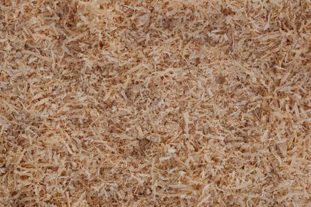 Warm background texture pattern of softwood shavings.