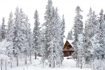 hospedaje: White Christmas en invierno caba�a en el bosque entre la nieve cubre �rboles abetos.