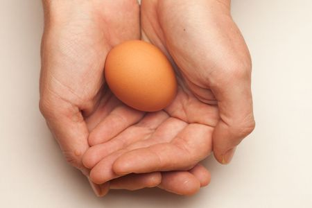 Single egg cupped by two hands, isolated on white. Stock Photo