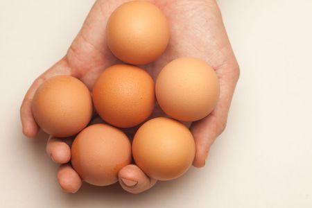 chucky: Handful of eggs, nest eggs, concept, multi-tasking.