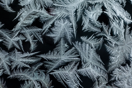 Background pattern texture of real ice-flowers on winter window glass. Stock Photo - 6775564