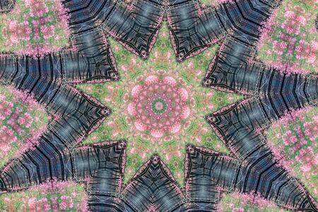 mandala: Kaleidoscopic altered image of fireweed (Epilobium angustifolium) in burned forest resembling a mandala Stock Photo