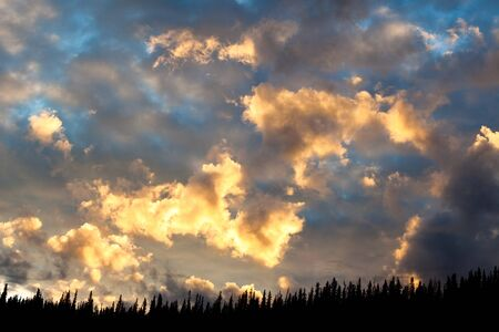 boreal: Sunset over boreal forest flares up clouds like forest fire