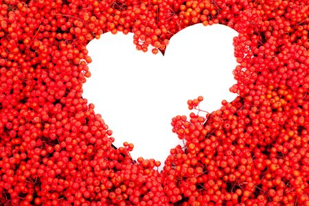 Background texture pattern of red mountain ash berries (Sorbus aucuparia) with white heart-shaped copyspace for your message of love. Banco de Imagens