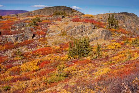 Fall-colored alpine tundra, Yukon Territory, Canada. Archivio Fotografico