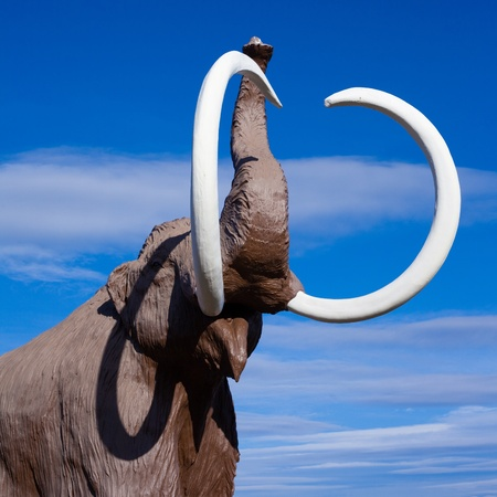 extinct: Sculpture of extinct wooly mammoth in aggressive pose. Stock Photo