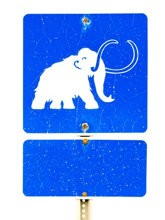 woolly: Funny mammoth icon on old weathered blue information road sign isolated on white background.