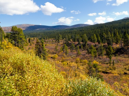 Fall colored valley among hills and mountains covered with boreal forest in Yukon Territory, Canada Stock Photo - 10671529