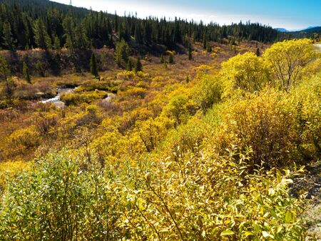 yukon: Fall colored valley among hills and mountains covered with boreal forest in Yukon Territory, Canada