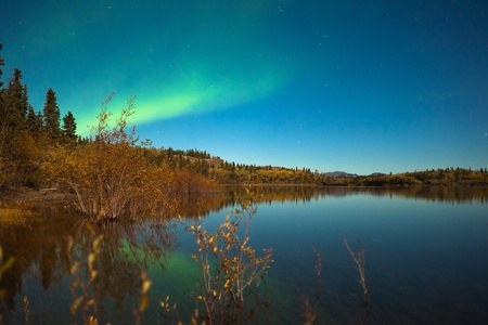 northern nature: Northern lights (Aurora borealis) in moonlit night over Lake Laberge, Yukon, Canada, in fall.