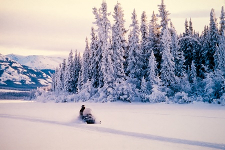 Winter snow sports on a snowmobile surrounded by towering ice covered spruces and white landscapes of the Yukon Territory, Canada