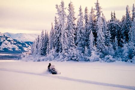 Winterschneesportgebiet auf einem Schneemobil durch die hoch aufragenden Eis bedeckt Fichten und wei�en Landschaften des Yukon Territory, Kanada umgeben Lizenzfreie Bilder