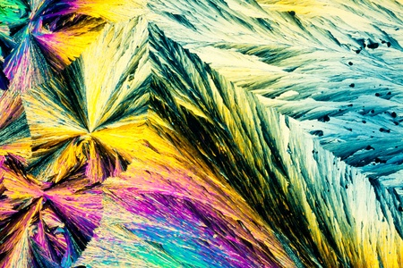 Colorful apearence of crystals of benzoic acid, a food preserving additive, in polarized light