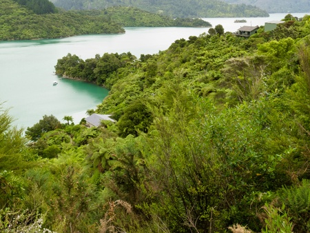 View of beautiful coastal landscape of New Zealand Marlborough Sounds, Kenepuru Sound, with remote houses and anchored boats