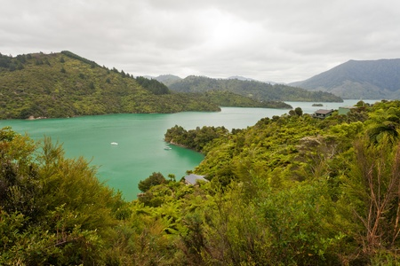 View of beautiful coastal landscape of New Zealand Marlborough Sounds, Kenepuru Sound, with remote houses and anchored boats photo