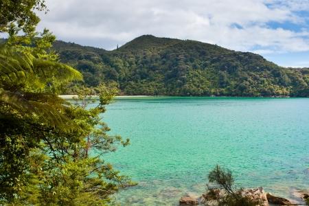 subtropical: Tranquil bay framed by lush subtropical forest of Abel Tasman National Park, South Island, New Zealand