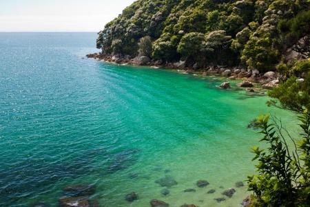 tasman: Tranquil bay framed by lush subtropical forest of Abel Tasman National Park, South Island, New Zealand