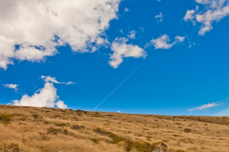 grassy field: Hillside covered with dry yellow grass against blue sky with clouds Stock Photo