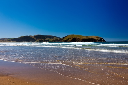 Curio Bay on South Coast of New Zealand South Island photo