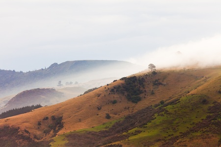 Fogs and bad weather over Otago peninsula landscape scenery, South Island near Dunedin, New Zealand photo