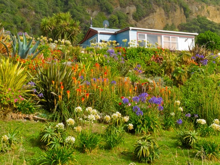 Rural dream house in lush flowering natural garden on a sloping mountainside with flowering red hot pokers and agapanthus in the garden
