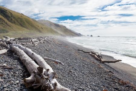 sangre derramada: Playa de grava y madera a la deriva en Gore Bay, costa este de Isla Sur, Nueva Zelanda